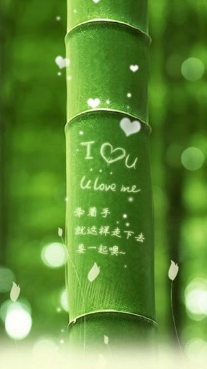 I Love You Bamboo iPhone 7 wallpaper