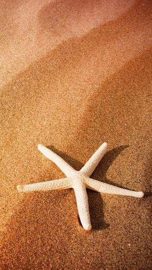 Beach Seastar iPhone 7 wallpaper