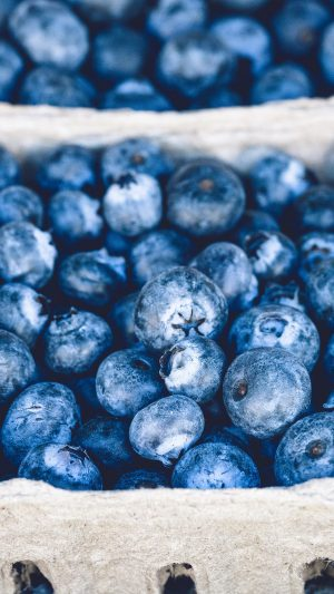 Blueberry Mart Fruit Nature Eat Food iPhone 7 wallpaper