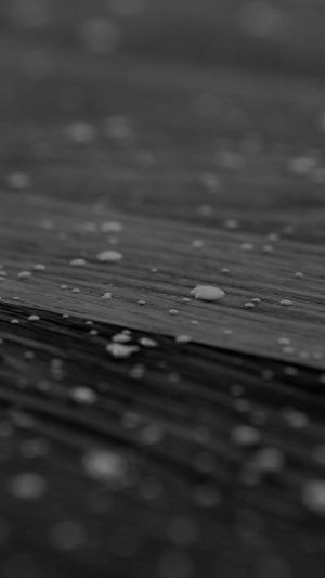 Drops Of Milk On Floor Pattern Nature Dark Bw iPhone 7 wallpaper