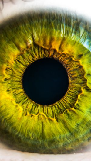 Eye Human Nature Pupil Body Science iPhone 7 wallpaper