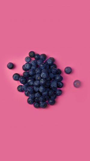 Food Blueberry Pink Art Nature iPhone 7 wallpaper