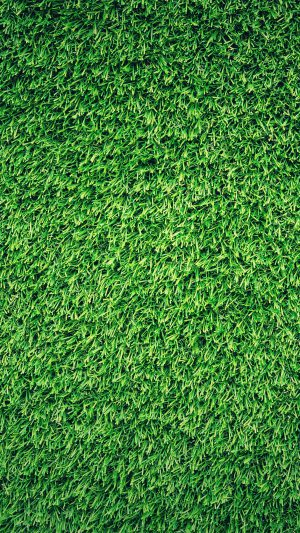 Grass Green Pattern Nature iPhone 7 wallpaper