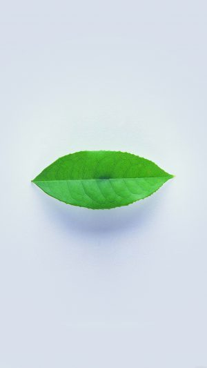 Green Leaf Minimal Nature Art iPhone 7 wallpaper