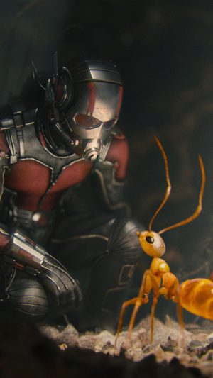 Marvel Antman Metts Ant Film Art Illustration iPhone 7 wallpaper