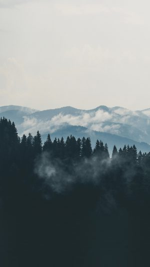 Mountain Fog Nature View Wood Forest iPhone 7 wallpaper