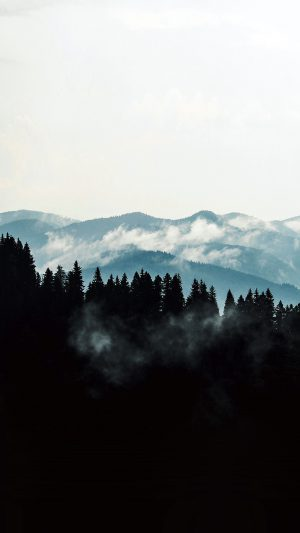 Mountain Fog Nature View Wood Forest Dark iPhone 7 wallpaper
