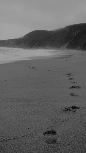 Naked Walk Sea Beach Nature Pure Dark Bw iPhone 7 wallpaper