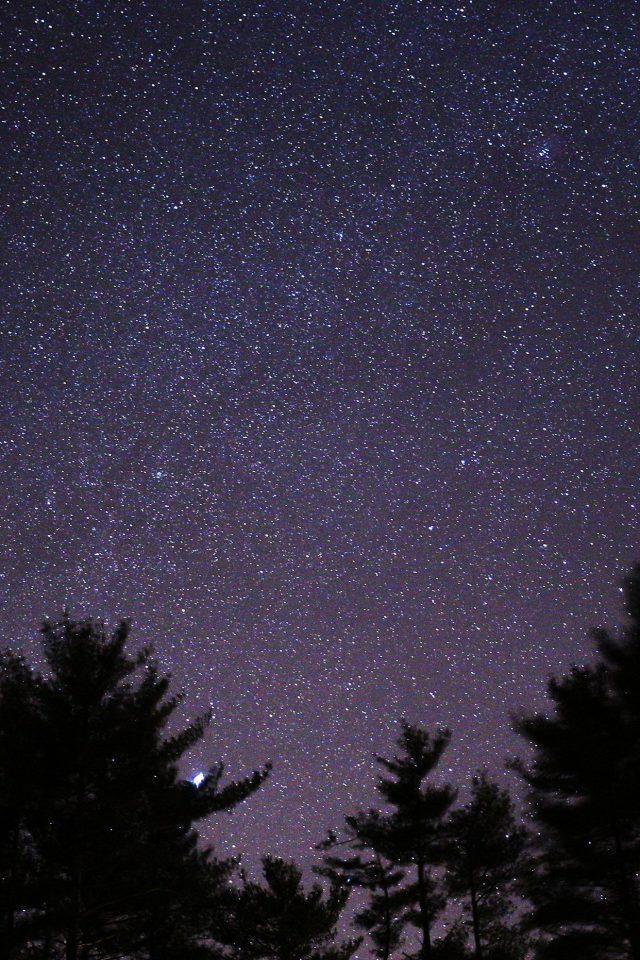 Most Inspiring Wallpaper Night Iphone 7 - Night-Sky-Star-Space-Starry-Wood-Dark-640x960  Pictures-87751.jpg
