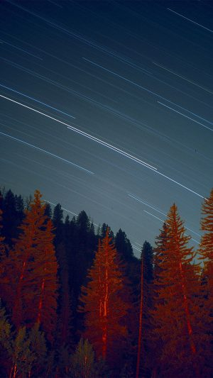 Night Wood Mountain Star Sky Nature iPhone 7 wallpaper