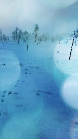 Snow Walk Winter Blue Bokeh Footprints Nature Mountain iPhone 7 wallpaper