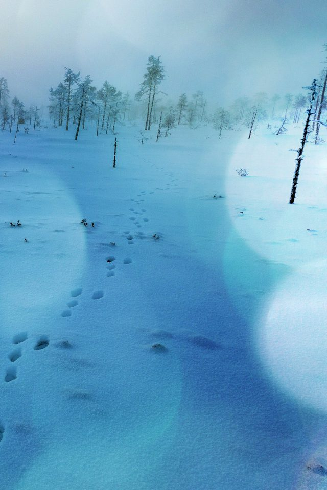 Snow Walk Winter Blue Bokeh Footprints Nature Mountain iPhone wallpaper