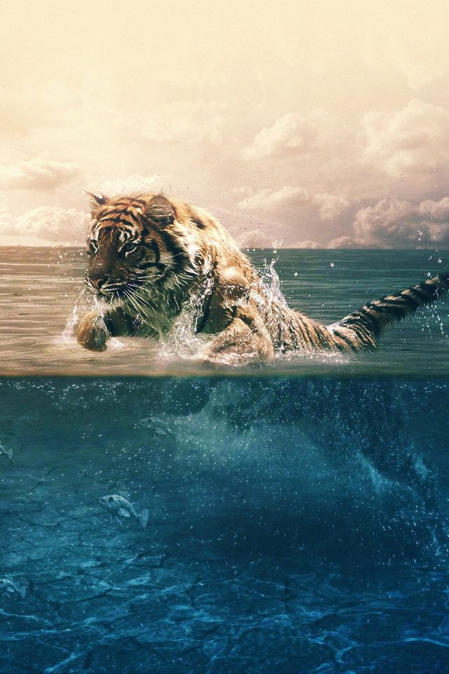 Tiger Running Blue Sea Nature iPhone wallpaper