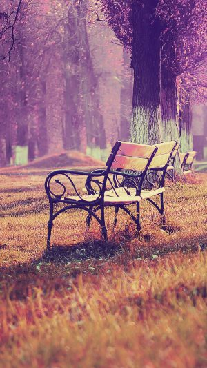 Wallpaper Fall Blue Park Chair Lonely Nature iPhone 7 wallpaper