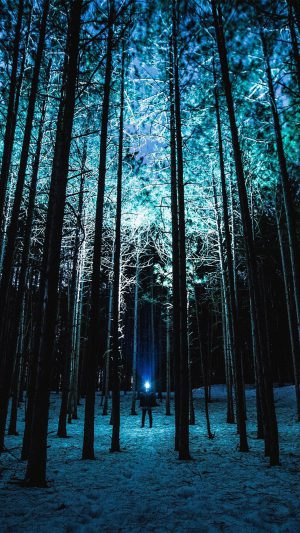 Wood Mountain Nature Blue Night iPhone 7 wallpaper
