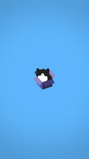 Cat Box Blue Illust Animal Art Minimal iPhone 7 wallpaper