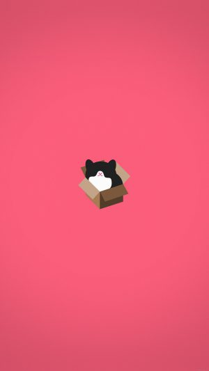 Cat Box Red Illust Animal Art Minimal iPhone 7 wallpaper