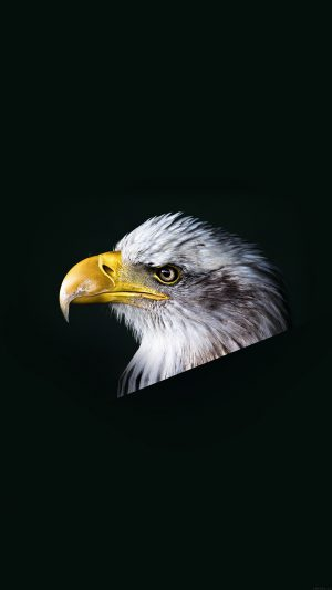 Eagle Dark Animal Bird Face iPhone 7 wallpaper