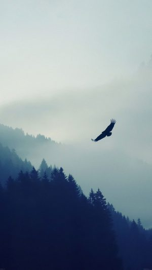 Eagle Mountain Fly Animal iPhone 7 wallpaper
