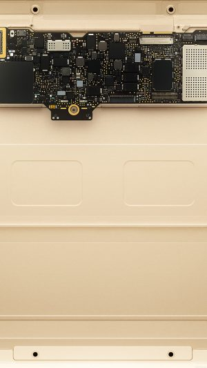 Inside Apple Mackbook Gold Art iPhone 7 wallpaper