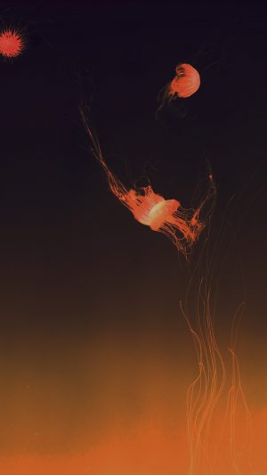 Jellyfish Sea Animal Orange By Lance Anderson Nature iPhone 7 wallpaper