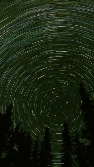 Star Trail Green Tree Space Night Nature iPhone 7 wallpaper
