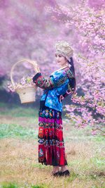 Chinese Ethnic Culture girl 1 iphone 6 plus wallpaper